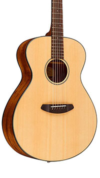 Breedlove-Discovery-Concert-Body