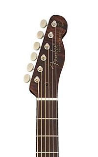 Fender-Brown-Derby-Headstock