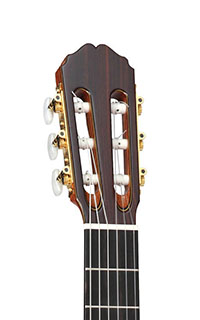 Takamine-TH5C-Headstock