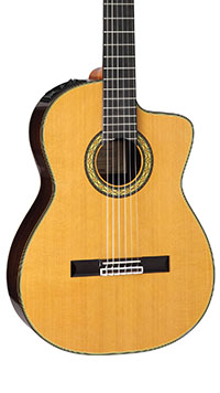 Takamine-TH5C-Body